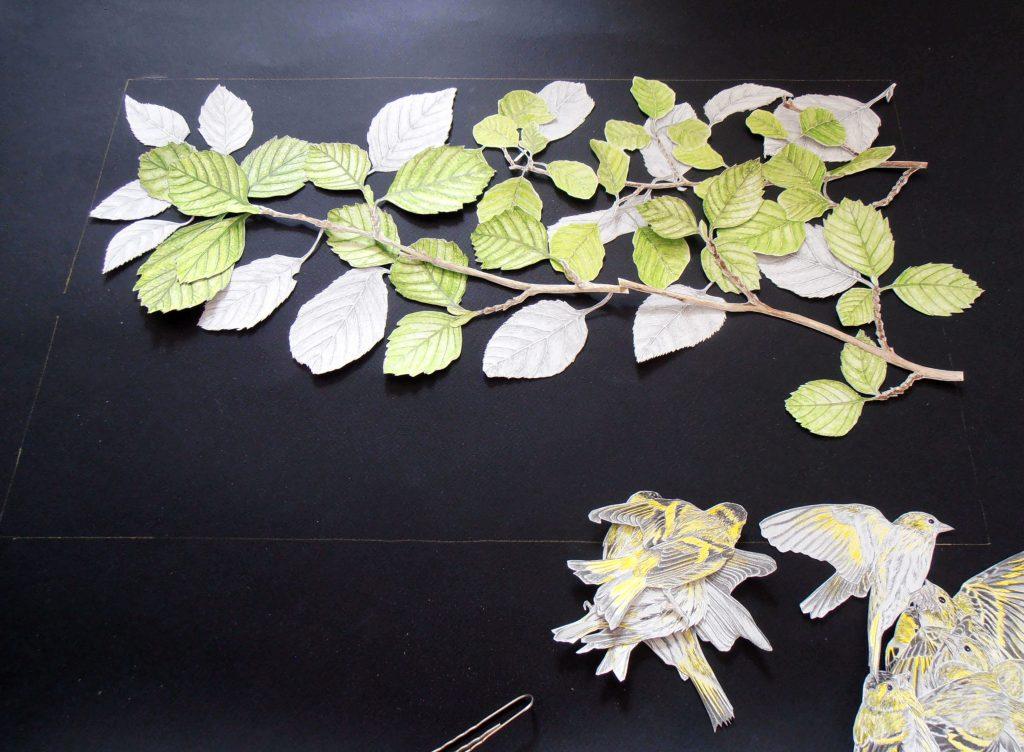 mise en place des éléments du collage des tarins des aulnes