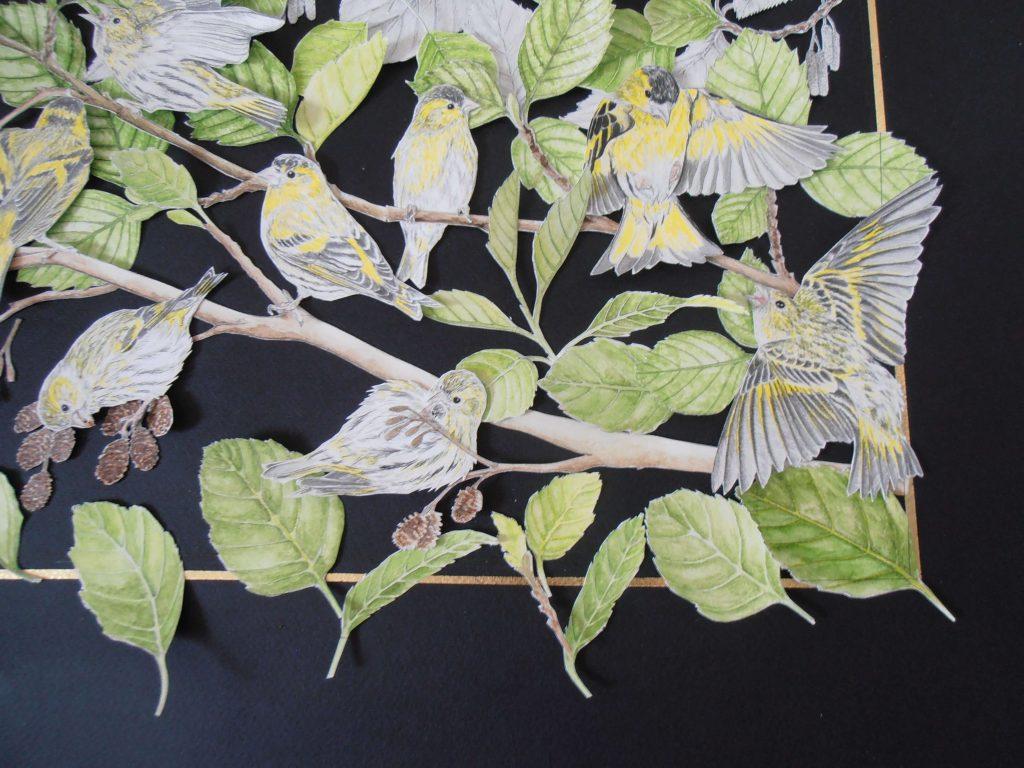 positionnement des éléments du collage des tarins des aulnes