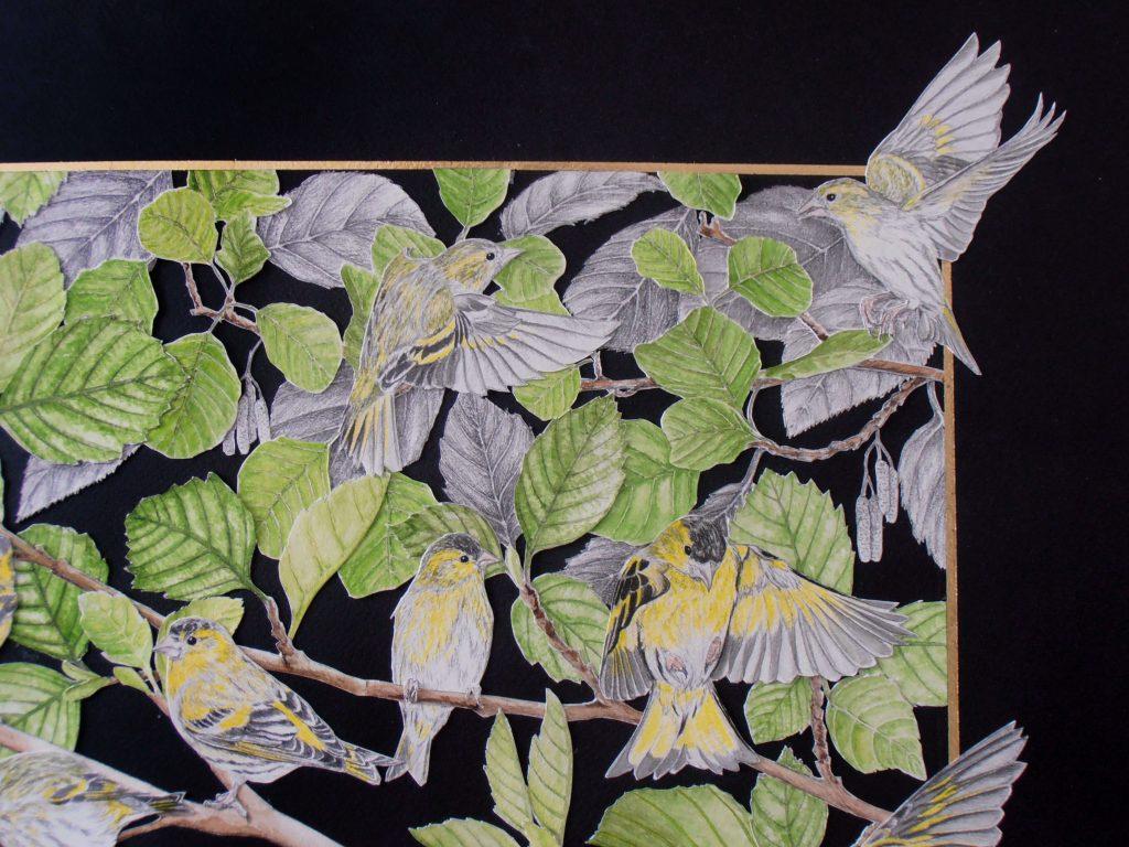 détail du collage des tarins des aulnes, coin droit haut