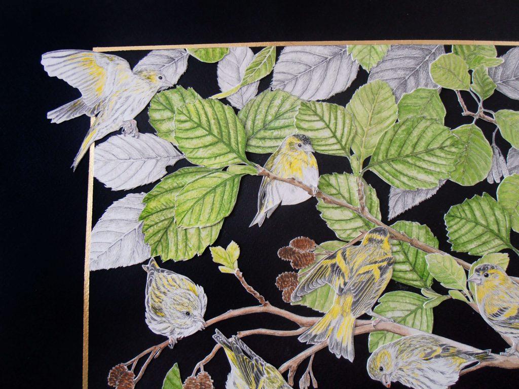 détail du collage des tarins des aulnes, coin gauche haut