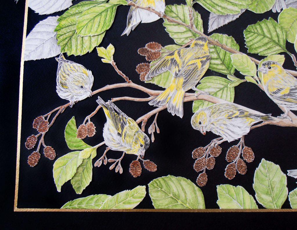 détail du collage des tarins des aulnes, coin gauche bas