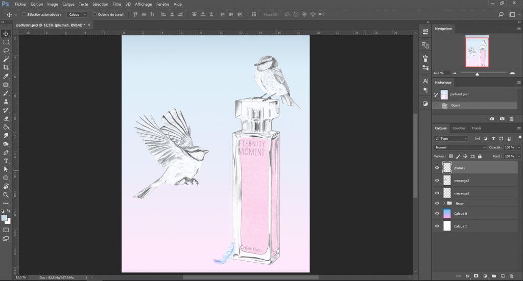 Vue de l'illustration après colorisation numérique.