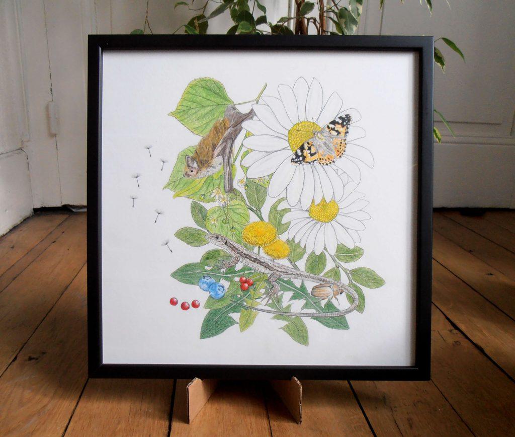 Création de motif de l'été, illustration naturaliste et botanique, pipistrelle, chauve-souris, lézard des murailles, papillon belle dame, hanneton, marguerite, pissenlit, tileuil