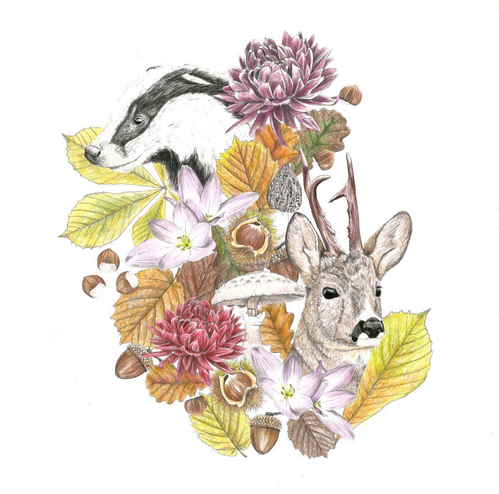 création de motif de l'automne,fleur illustration naturaliste, botanique, blaireau, chevreuil, feuilles, champignon, châtaignier, noisetier, chêne