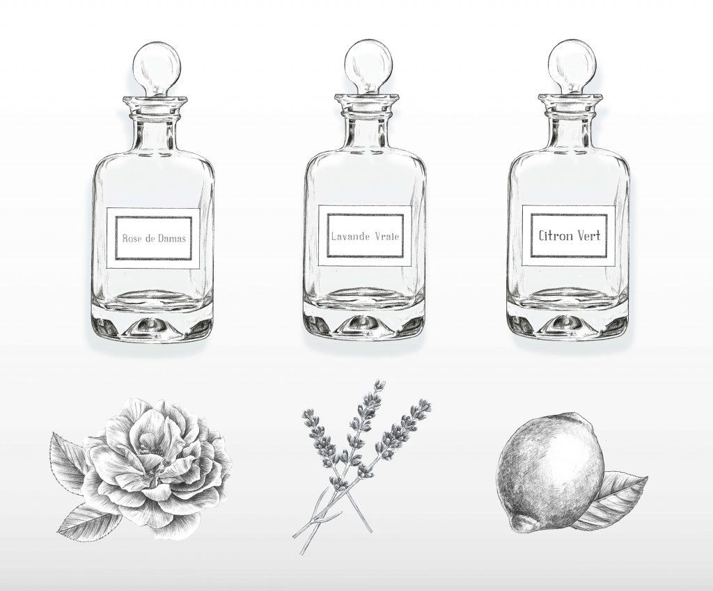 Illustration packaging cosmétique, parfum, huiles essentielle, illustration beauté