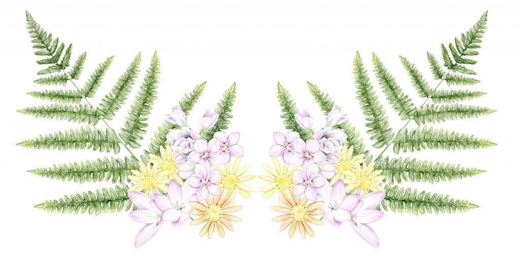 motif fleurs illustration botanique, création de motif floral