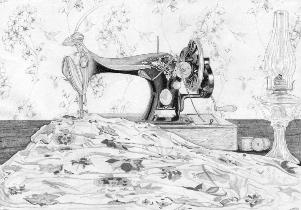 dessin contemporain, entomologie, illustration, graphite, insecte hybride, mante religieuse