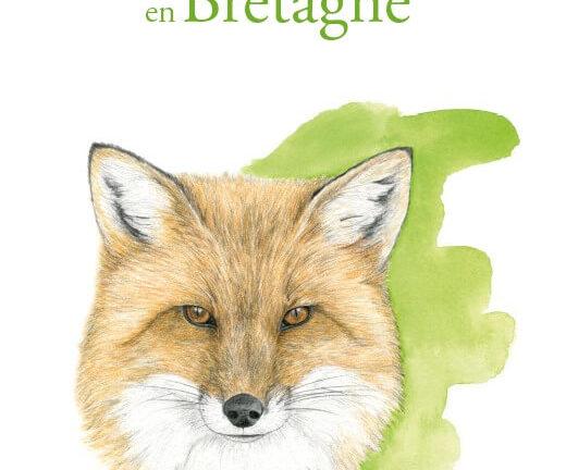 nature et paysages Bretagne