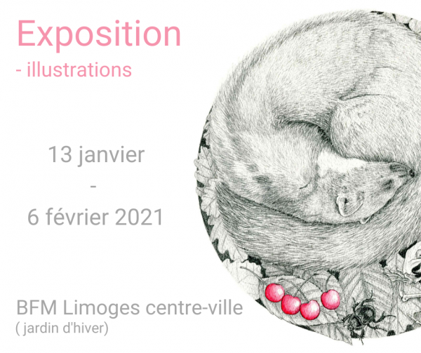 Exposition BFM Limoges
